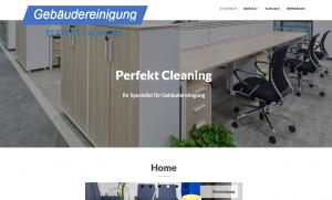 Perfektcleaning Screenshot Webdesign Referenzen